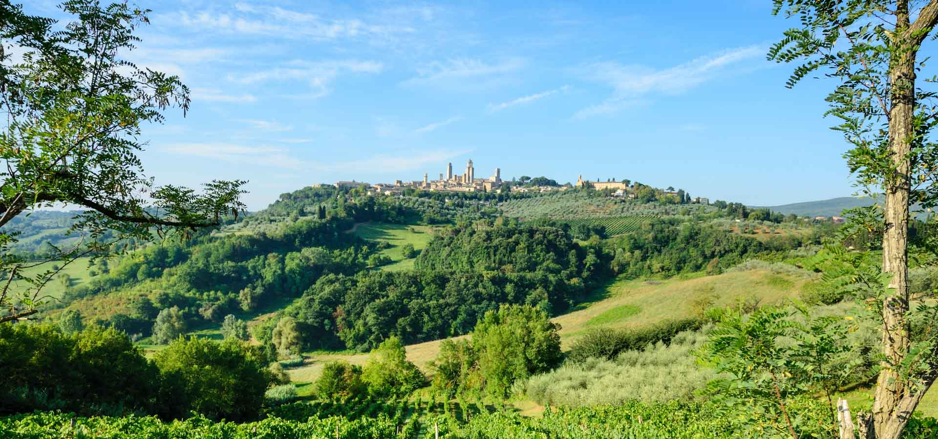 The Hill Top Towns Of Tuscany